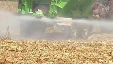 Com fim do vazio sanitário, produtores rurais se preparam para o plantio da soja de verão - Expectativa é de que o custo de produção seja maior por causa da alta do dólar.