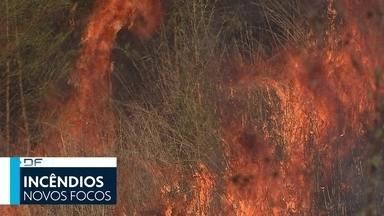 DF2 - Edição de sexta-feira, 07/09/2018 - Bombeiros combateram 57 focos de incêndio no DF apenas nesta sexta (7). E mais as notícias do dia.