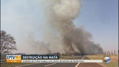 Incêndio destrói mata em centro de estudos de gado de corte em Sertãozinho, SP - Corpo de Bombeiros ainda trabalha no local, três dias após o início das chamas.
