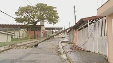 Árvore cai e provoca estragos na zona leste de Sorocaba - A queda de uma árvore na Rua João Frederico Hingst, no Jardim Cruzeiro do Sul, provocou estragos na zona leste de Sorocaba (SP).