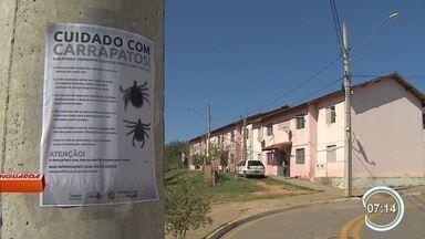 Infestação de carrapatos preocupa moradores de São José - Mortes por febre maculosa gerou preocupação na população.