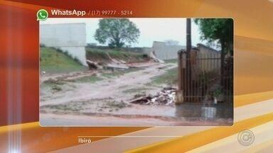Temporal derruba árvores e parte do muro do cemitério de Ibirá - O temporal que atingiu o noroeste paulista na quinta-feira (20) derrubou árvores e parte do muro do cemitério de Ibirá. Ninguém ficou ferido.