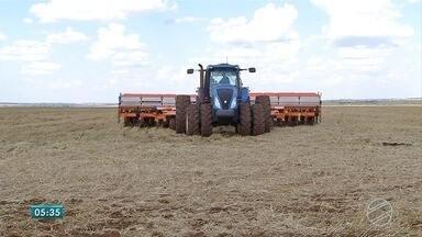 Confira notícias do agronegócio em Mato Grosso do Sul - Confira notícias do agronegócio em Mato Grosso do Sul.
