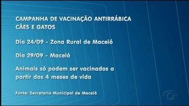Vacinação contra a raiva começa nesta segunda-feira (24) na zona rural de Maceió - Na capital, animais só começam a ser vacinados no dia 29.