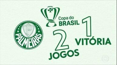 Palmeiras pronto para a decisão contra o Cruzeiro - Palmeiras pronto para a decisão contra o Cruzeiro