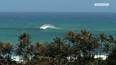 Canoa Havaiana E Foil