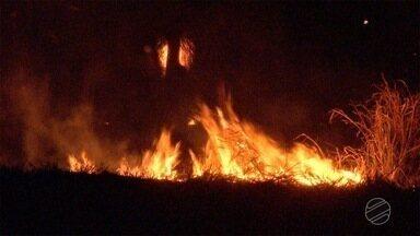Número de queimadas cai cerca de 40% durante período proibitivo em MT - Número de queimadas cai cerca de 40% durante período proibitivo em MT.