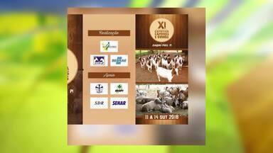 Confira a agenda de feiras e eventos do mundo rural - Confira a agenda de feiras e eventos do mundo rural