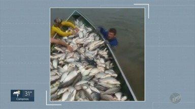 Polícia Ambiental multa pescadores profissionais por pesca irregular no Rio Piracicaba - Vídeos publicados na redes sociais ajudaram na identificação