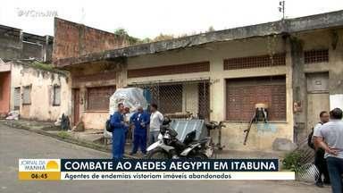 Aedes Aegypti: agentes de endemias vistoriam imóveis abandonados em Itabuna - O índice de infestação na cidade é de 12%, sendo que o tolerado pelo Ministério da Saúde é de 1%.