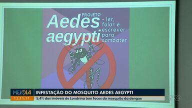 Infestação do mosquito da dengue aumenta em Londrina - O levantamento divulgado hoje aponta infestação de 5,4%, ou seja, de cada 100 imóveis vistoriados, 5,4% tem focos do mosquito da dengue.
