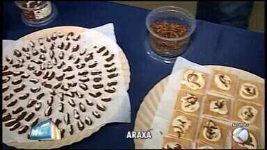 Palestra em Araxá trata da proteína obtida por meio do consumo de insetos - Confira as informações sobre o tema.