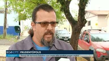Moradores que não limparem terrenos baldios serão multados em Prudentópolis - A prefeitura está notificando os moradores.