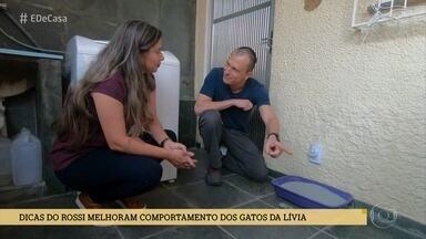 Alexandre Rossi dá dicas para evitar que os gatos façam xixi fora do lugar - O especialista em comportamento animal visitou a casa de Lívia e deu várias ideias para melhorar a convivência dela com seus amados gatinho