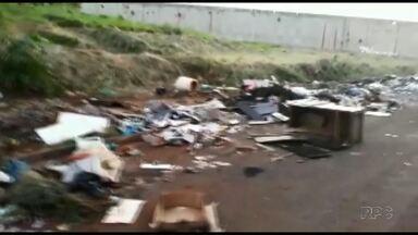 Telespectador flagra lixo jogado em rua do Jardim Sumaré, em Maringá - Problema é comum em Maringá; infrator está sujeito a multa