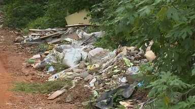 Descarte irregular de lixo é preocupante em Campo Limpo Paulista - O descarte irregular de todo tipo de sujeira está cada vez mais preocupante em Campo Limpo Paulista. A equipe de reportagem da TV TEM encontrou, pelo menos, três locais com muito lixo e entulho. Veja mais detalhes na reportagem.