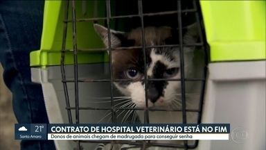 Contrato da prefeitura com hospitais veterinários está no fim - Muitos donos de animais chegar de madrugada para conseguir atendimento.