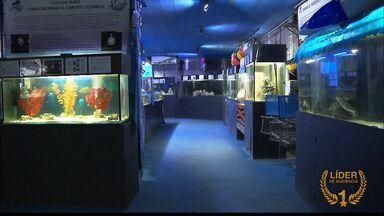 Aquário de João Pessoa promove ações de educação ambiental - O aquário possui várias espécies marinhas.