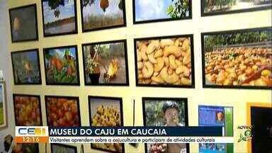 Visita ao Museu do Caju em Caucaia - 1 - Confira outras notícias no g1.globo.com/ce