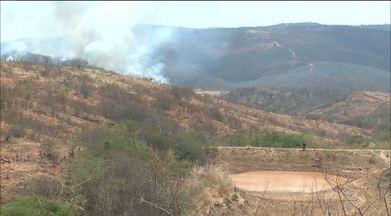 Incêndios são registrados no sertão da Paraíba - Fogo já teria destruído mais de 12 quilômetros de mata.