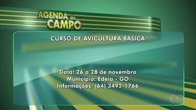 Veja os eventos ligados ao campo, em Goiás - Uma das programações é curso de avicultura básica, em Edéia.