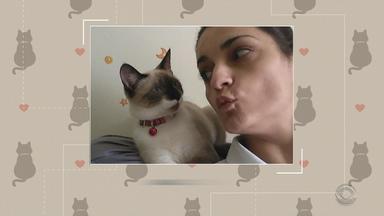 'Eu e meu gato': telespectadores compartilham fotos - Assista ao vídeo.