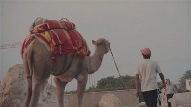 Irã: um país rico de cultura e petróleo (episódio 5)