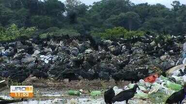 Coleta de lixo é retomada em Porto Velho - Local foi interditado por trabalho infantil.