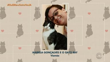 Eu e Meu Gato no JA: veja fotos enviadas pelos telespectadores com seus bichinhos - Assista ao vídeo.
