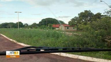 Moradores reclamam do mato alto e falta de iluminação na entrada de Oliveira de Fátima - Moradores reclamam do mato alto e falta de iluminação na entrada de Oliveira de Fátima