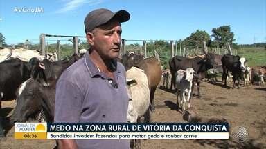 Vitória da Conquista: bandidos invadem fazendas para matar gado e roubar carne - Os fazendeiros estão com medo; saiba mais.