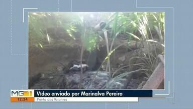 Ponto dos Volantes é uma das cidades a enviar vídeo para o VC no MG1 - Confira todos os vídeos enviados por telespectadores.