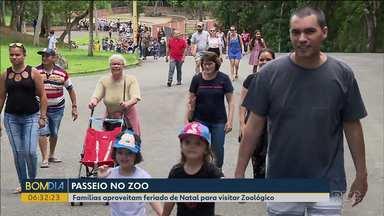 Famílias aproveitam feriado de Natal para visitar zoológico de Curitiba - Um passeio divertido e cheio de amor.