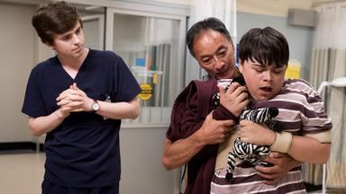 Que Peninha... - Shaun recorda o passado para ajudar um adolescente com deficiência intelectual, Claire atende um jovem alpinista ferido, e Glassman tem alucinações no pós-operatório.