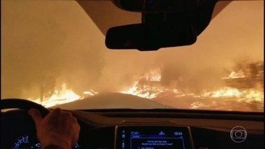 Entre temperaturas extremas, o homem duelou contra fogo e gelo - Na maior ilha do Havaí e na Guatemala, os vulcões mostraram suas forças. O mundo acompanhou o incêndio que mais matou pessoas da história na Califórnia.