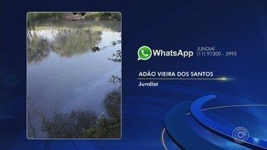 Moradores reclamam de mau cheiro e cor escura da água da lagoa do Parque Botânico - Moradores enviaram à TV TEM fotos da lagoa do Parque Botânico, no Jardim Tulipas, em Jundiaí (SP), nesta quinta-feira (3). A água do local amanheceu escura e com mau cheiro.