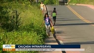 Calçadas com mais de 1 km de extensão que dá acesso ao bairro Goiabal está intrafegável - Espaço vem sendo tomado pelo matagal obrigando pedestres dividirem a rua entre os veículos.