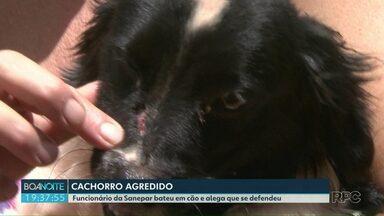 Cachorro é agredido por funcionário da Sanepar - Empresa alegou legítima defesa. Cão tem seis meses e está bem.