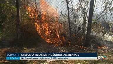 Aumenta o número de queimadas no Paraná em 2018 - Foram registradas 8.850 queimadas no estado no ano passado.