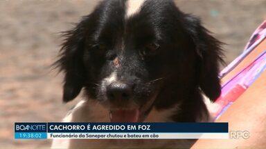 Cachorro é agredido por funcionário da Sanepar em Foz do Iguaçu - Veja dicas de como agir no caso de uma animal avançar sobre você.