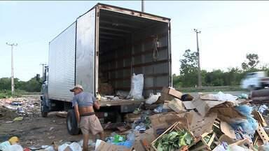 Descarte irregular de lixo é flagrado às margens da BR-135, em São Luís - Na capital, muitas áreas não ocupadas estão se transformando em lixões.