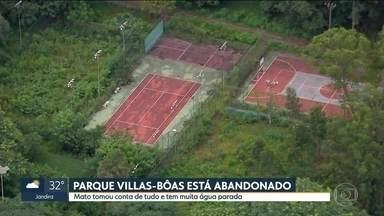 Parque Villas-Bôas sofre com o abandono - O mato tomou contra de tudo e tem muita água parada no local.