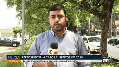 Maringá registra quatro casos suspeitos de leptospirose - Doença é transmitida pelo contato com a urina de rato.