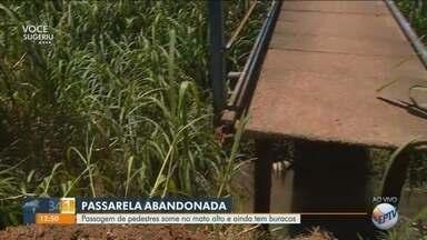 Abandono e mato alto impossibilitam utilização de passarela em Campinas - Situação que ocorre há pelo menos três meses coloca em risco a vida de quem precisa utilizar a passarela.