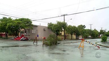Chuva forte deixa casas destelhadas e sem energia em Uruguaiana - Defesa Civil está distribuindo lonas para famílias que tiveram estragos por conta dos temporais.