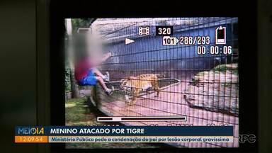 MP pede a condenação do pai do menino que foi atacado por tigre em Cascavel - O caso foi em 2014. O menino teve o braço amputado.
