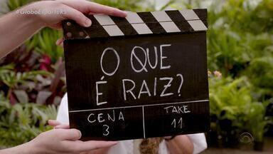 O que é raiz? Telespectadores dão suas definições do termo - Vem aí a raiz do futebol no Rio Grande do Sul.