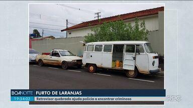 Retrovisor quebrado ajuda polícia a encontrar criminoso que roubou laranjas - A parte do carro caiu no meio da plantação durante o roubo.