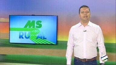 Duas cidades de MS entre as principais produtoras do agro que mais cresceram - Nova Alvorada do Sul e Rio Brilhante.