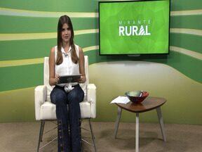 Mirante Rural - Programa na íntegra do dia 13/01/2019 - Confira o programa completo.